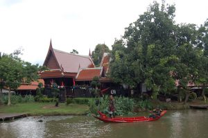 Warrior Performance in the floating market