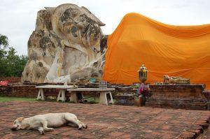 reclining-buddha-ayutthaya
